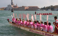 The Pink Lionesses in Venice